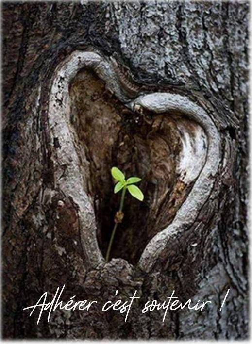 Adherer coeur 1